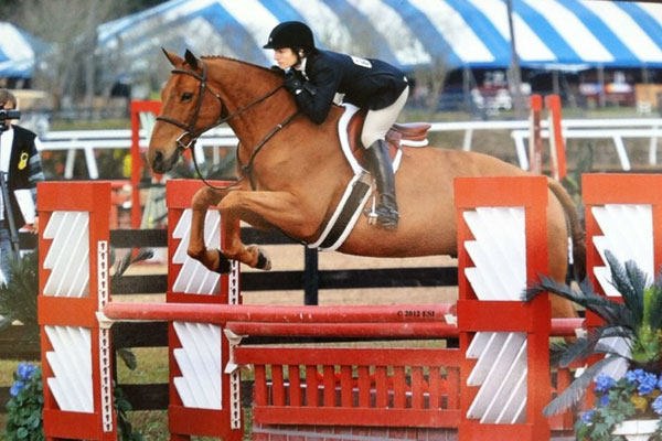 Personal Training Equestrian Fitness Hunters